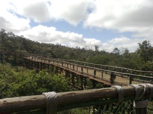 Route xapatanesque, parc de Nairobi, Kenya (c) éa marzarte