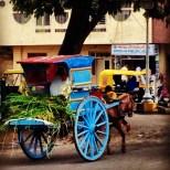 Calèche, Mysore