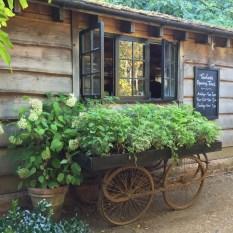 IMG_2694 petersham nurseries (c) Ea Marzarte - Small = Beautiful