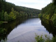 Dark hillslopes of the Ardenne forest
