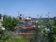 Donau boat