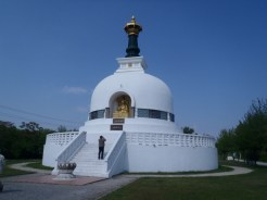 Yep, its a Buddhist stupa on the Donau