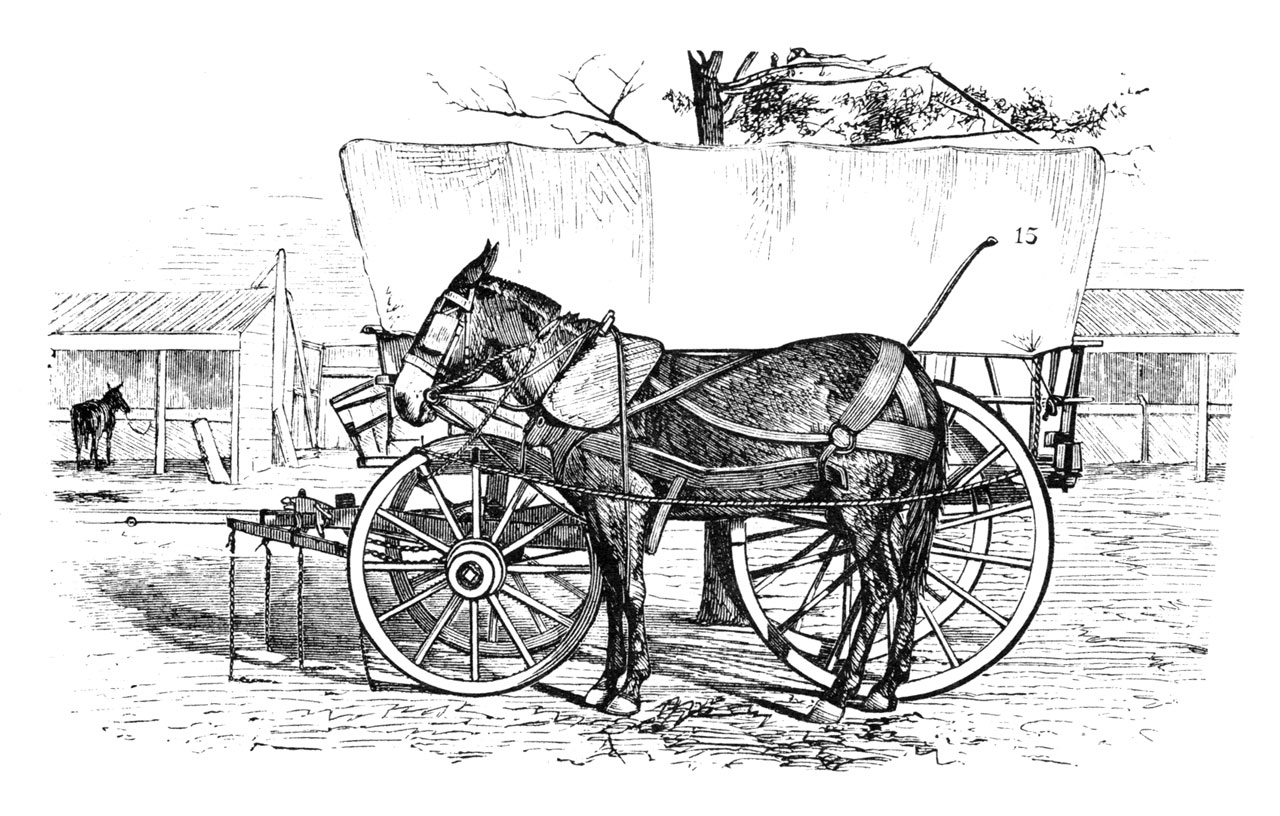Wagon Horse Harness