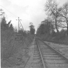 Butterwick Siding 3 looking West 1963