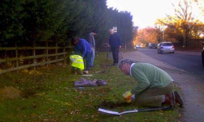 Smallford in Bloom Planting November 2011