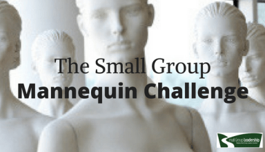 Small Group Mannequin Challenge