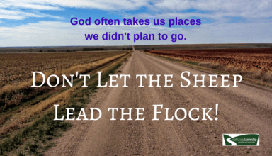Don't Let the Sheep Lead the Flock