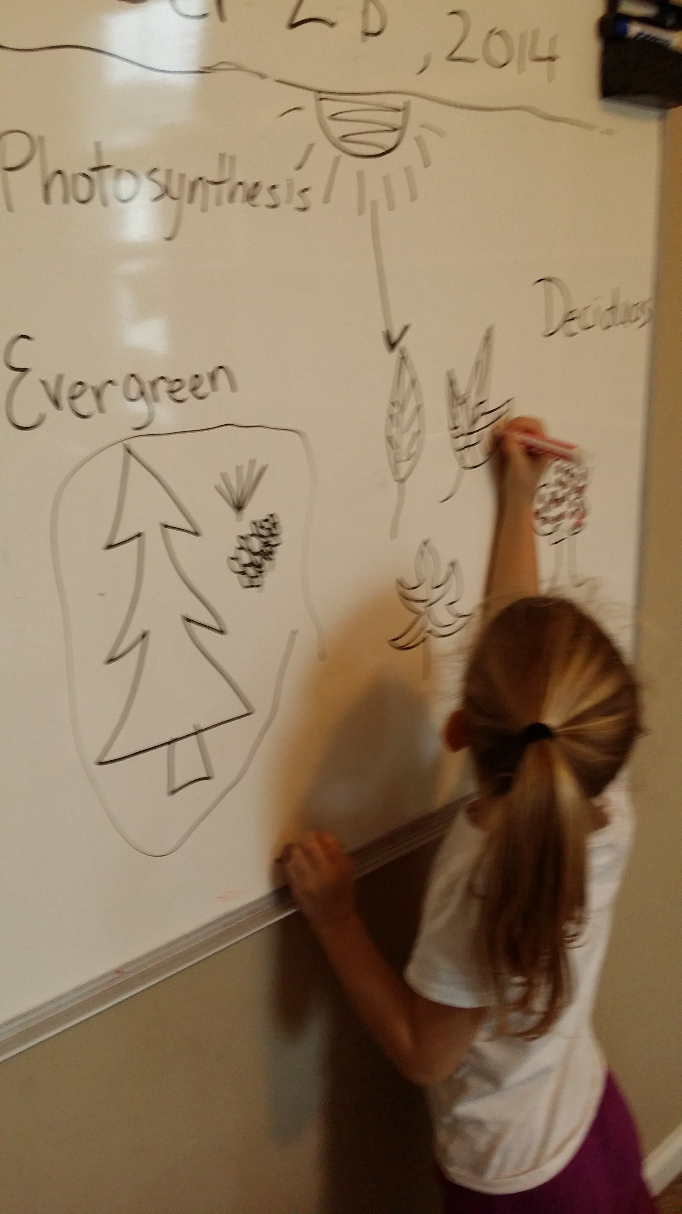 Kindergarten Weeks 14 15 Autumn Halloween Units