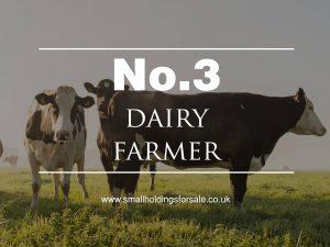Dairy Farm Smallholding