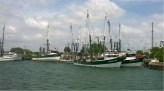 Brownsville Shrimp Fleet
