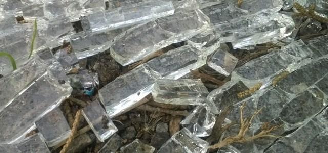 Broken Glass in Dirt
