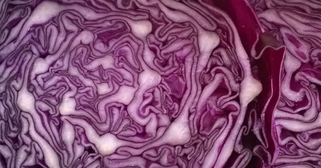 Red Cabbage Slices in the Kitchen