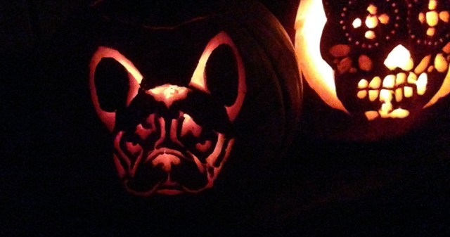 Jackolantern French Bull Dog