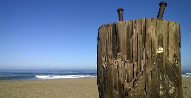 Driftwood Post Linda Mar Beach Pacifica CA