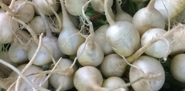 White Radishes Farmer's Market Davis CA