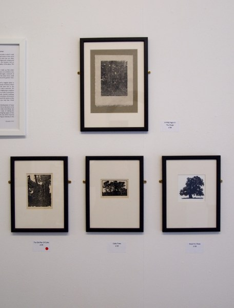 Wood Engravings by Rob Chapman