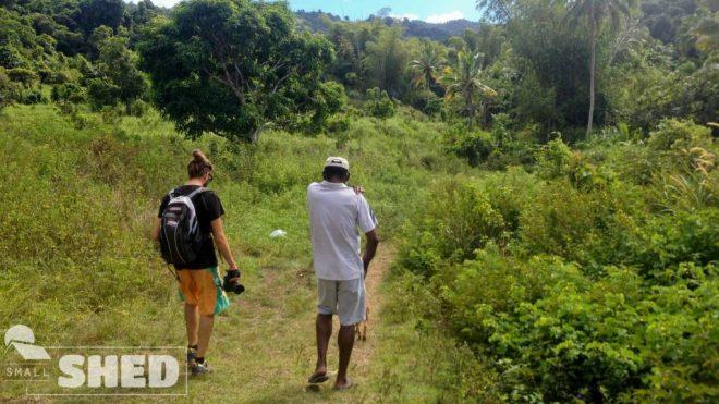 fiji- escursione - forest