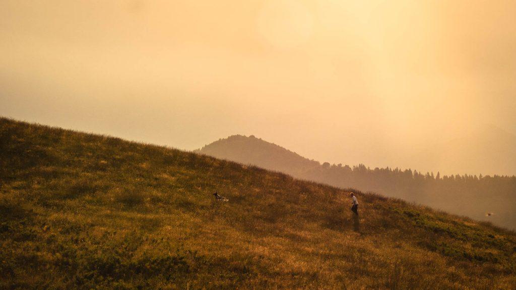 Pastori al tramonto