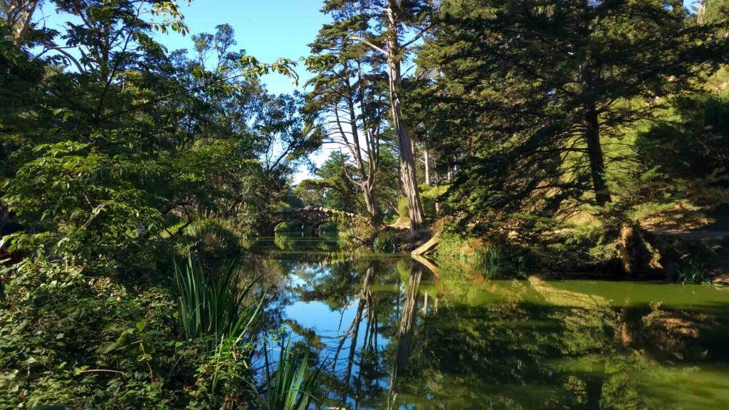 Scorcio di lago in parco a San Francisco