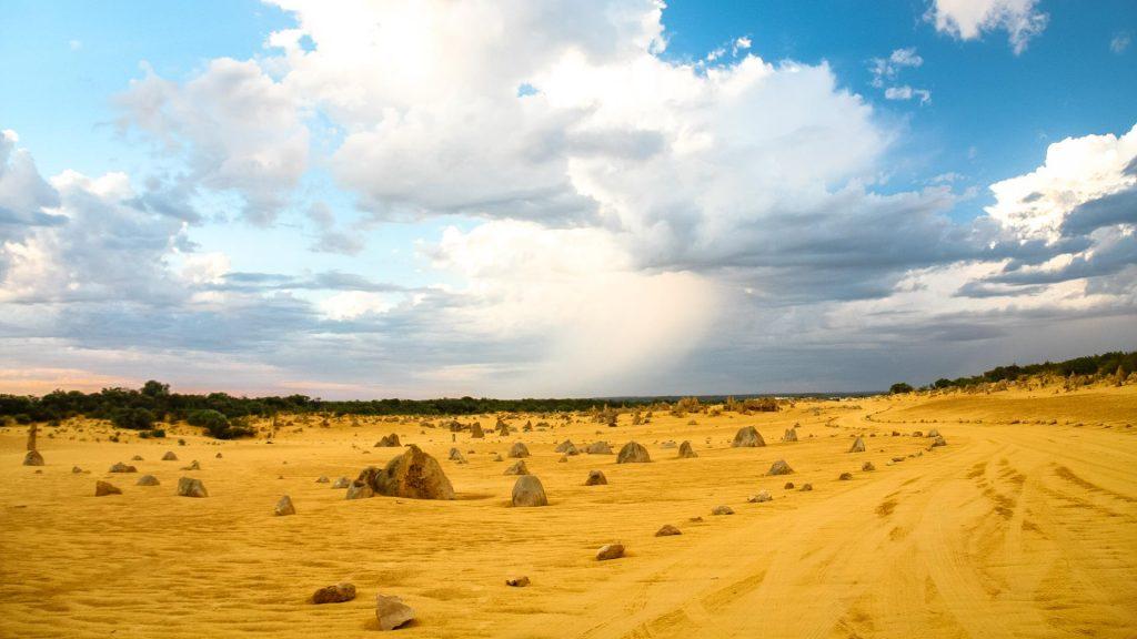 La pista di sabbia nel Pinnacles desert