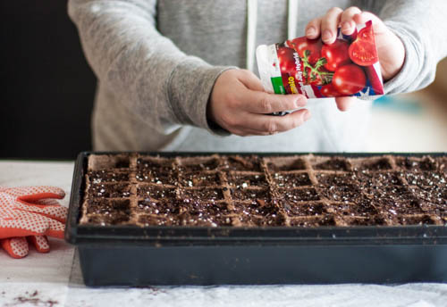 How To Start A Garden For Beginners A Free Garden Planner