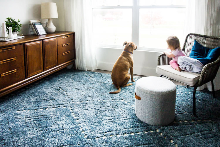 toddler-and-dog-in-front-room-with-navy-rug