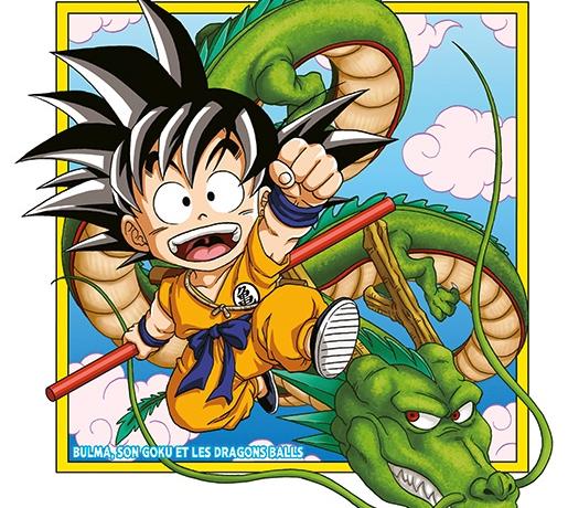 Dragon Ball SD, tome 1 : l'histoire raccourcie