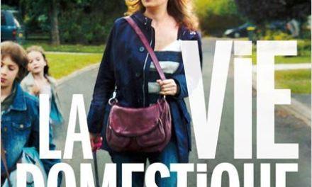 La Vie domestique, ou les Desperate Housewives françaises