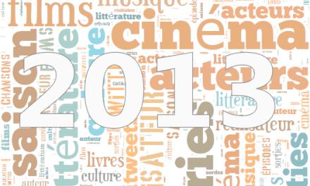 Petit bilan 2013 du site