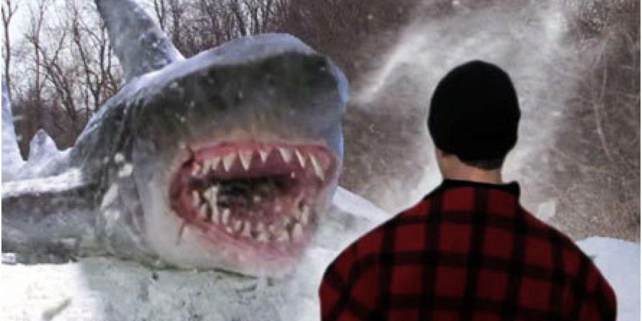 Et si on matait… des films avec des requins ?