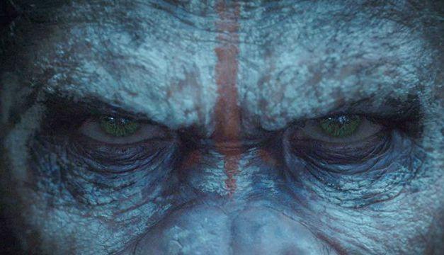 Planète des Singes, l'affrontement : Bromance