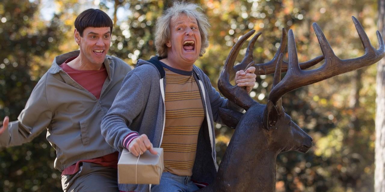 Dumb and Dumber 2 : Ils sont fous ces deux-là !