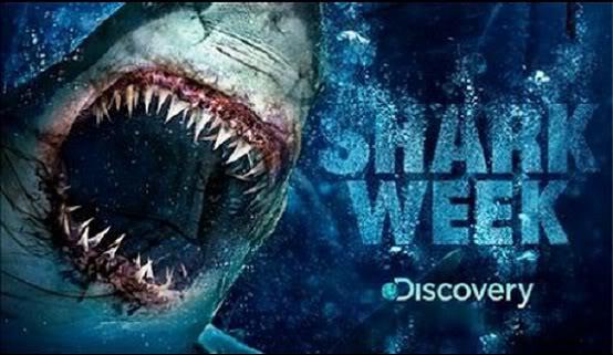 shark week - [Shark Week] Une semaine sous le signe du requin shark week