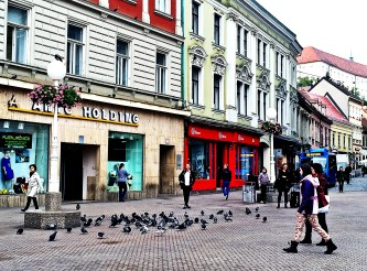One of my favourite photos I took, pigeon walk