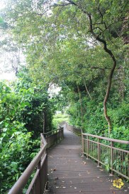 08 Singapore Southern Ridges Trail
