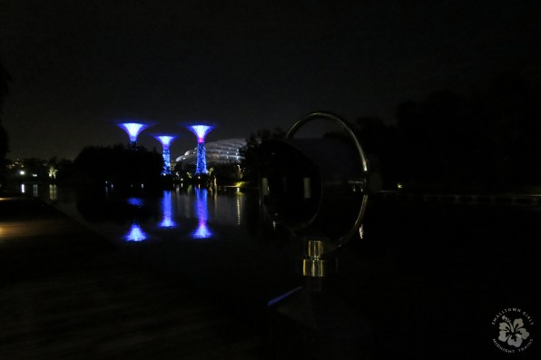 singapore gardens by the bay at night 01