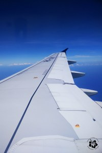 Air Asia Plane Wing