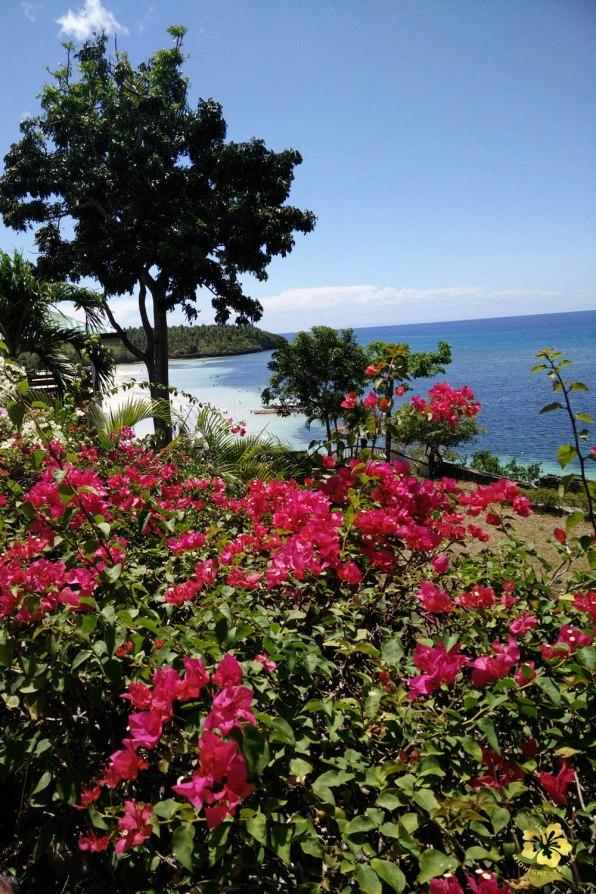 Camotes_Cebu_Where to stay_Santiago Bay_09