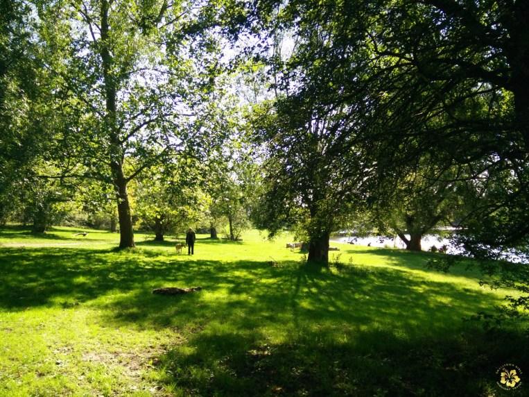 SGMT_London_Hampstead Heath_03_George Smiley