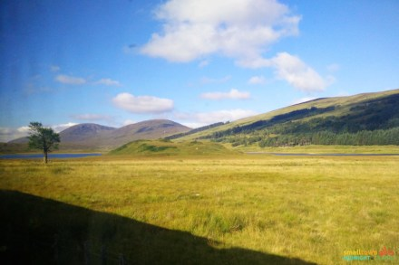 Scotland_Highlands_Train from Inverness to Kyle of Localsh_23