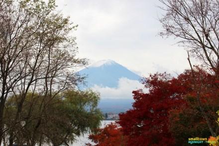 SGMT_Japan_Tokyo_Kawaguchiko_Mt Fuji_01