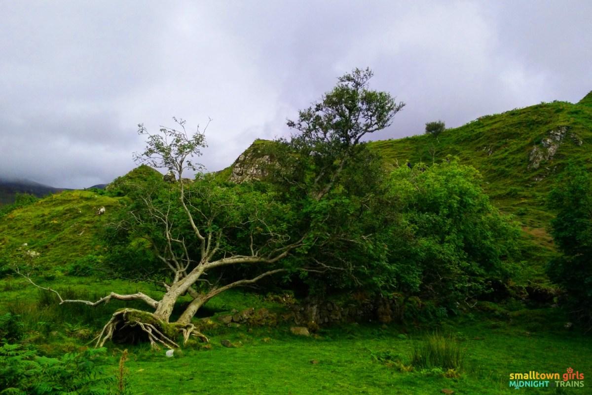 Scotland_Skye_Tour_Fairy Glen_01