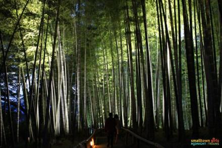 SGMT Japan Kyoto Kodaiji Temple 06 bamboo grove
