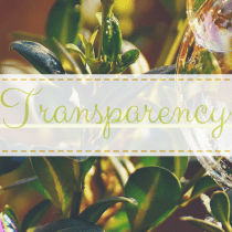 Transparency {Part 1}