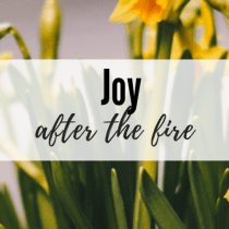 Joy After the Fire