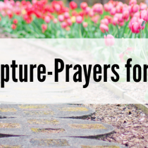 Mom for Life: TARGET Scripture-prayers for our children