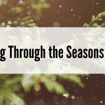 Dating Through the Seasons of Life