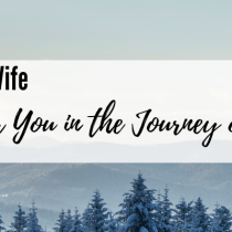 A Challenge for You in the Journey of Sanctification