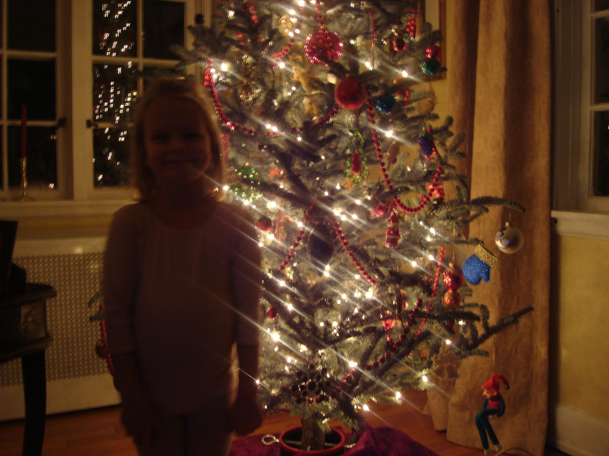 proud-of-tree