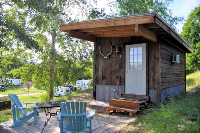 Pine Near R.V. Park Cabin